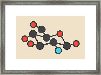 Glucosamine Dietary Supplement Molecule Framed Print by Molekuul