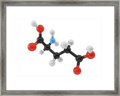 Glutamic Acid Amino Acid Molecule Framed Print by Maurizio De Angelis/science Photo Library