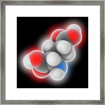 Glutamic Acid Molecule Framed Print by Laguna Design