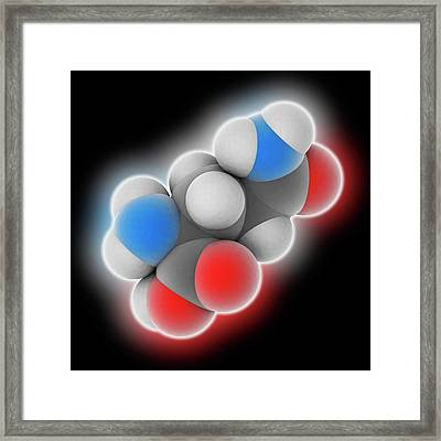 Glutamine Molecule Framed Print by Laguna Design