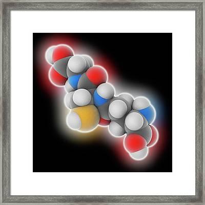 Glutathione Molecule Framed Print by Laguna Design
