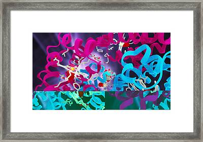 Glycated Haemoglobin Molecule Framed Print by Science Photo Library
