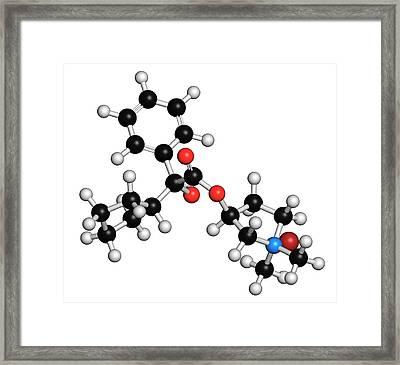 Glycopyrronium Bromide Copd Drug Molecule Framed Print