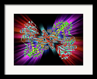 Nucleic Acid Synthesis Framed Prints