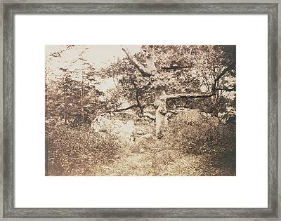 Gnarled Oak Tree Near Lepine Crossroads Gustave Le Gray Framed Print
