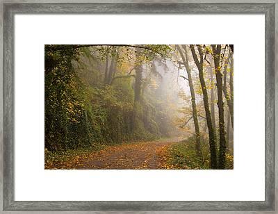 Go Ahead A Mystery Awaits Framed Print
