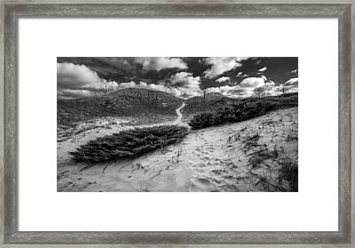 Go Between Framed Print