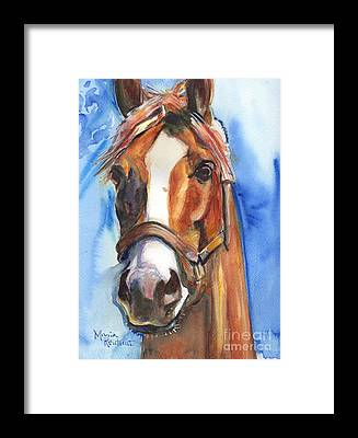 Racehorse Framed Prints