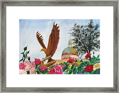 Go Eagles  Framed Print