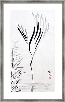 Go For It Framed Print by Oiyee At Oystudio