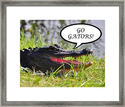 Go Gators Greeting Card Framed Print