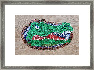 Go Gators  Framed Print by Kay Galloway