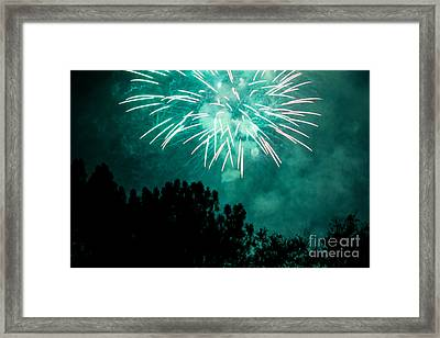 Framed Print featuring the photograph Go Green by Suzanne Luft