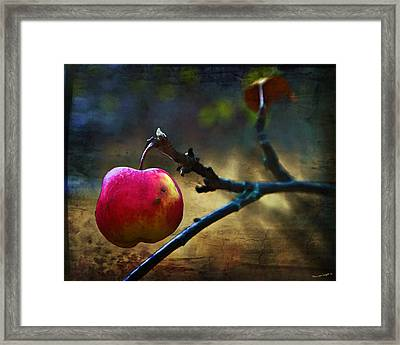 Go On Dearie  Take A Bite Framed Print by Theresa Tahara