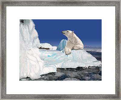 Go With The Floe Framed Print