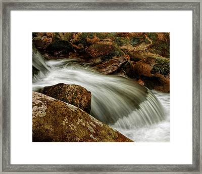 Go With The Flow Framed Print by Dave Bosse