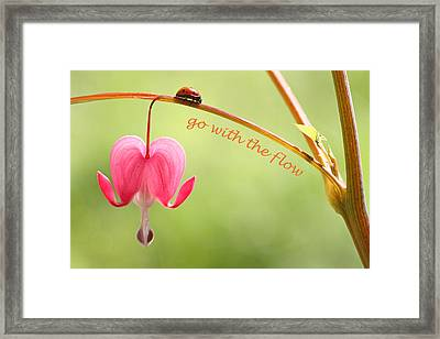 Go With The Flow Framed Print by Peggy Collins