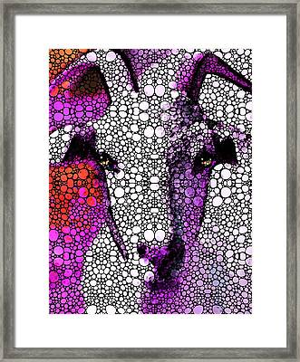 Goat - Pinky - Stone Rock'd Art By Sharon Cummings Framed Print by Sharon Cummings