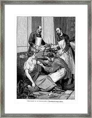 Goat To Human Blood Transfusion Framed Print