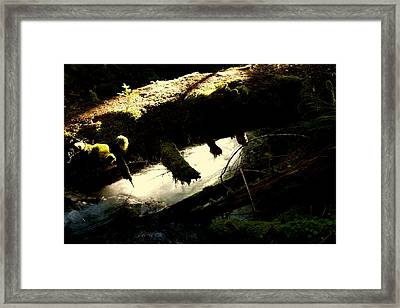 God Knows  Framed Print by Tim Rice