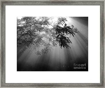 God Rays Framed Print