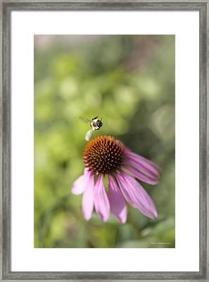 Goddess Of Fertility - Bee Flight Of Light And Life - Metaphysical Healing Energy Art Print  Framed Print