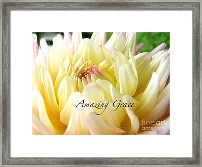 Framed Print featuring the photograph God's Amazing Garden by Margie Amberge