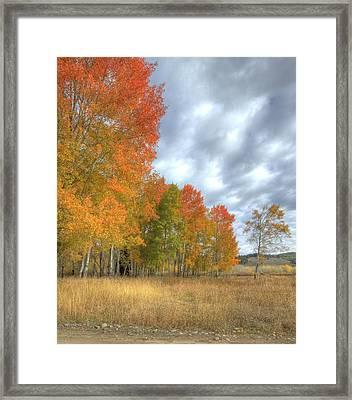 God's Artwork Framed Print