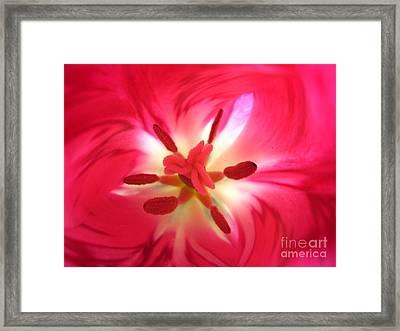 God's Floral Canvas 1 Framed Print