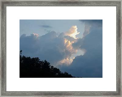 God's Message Framed Print by Carol Hoffman
