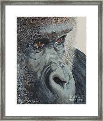 Going Ape...sold  Framed Print