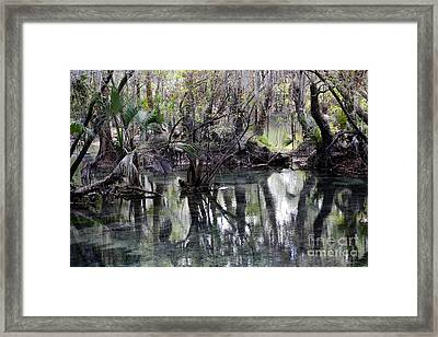 Going Back In Time Framed Print by Carol Groenen