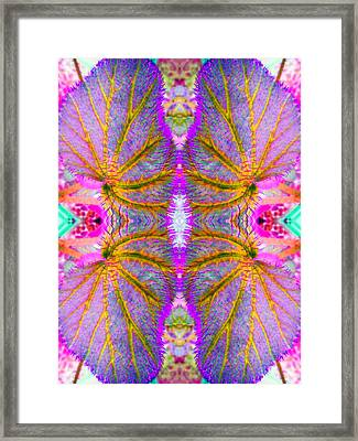 Going Beyond The Obvious Framed Print
