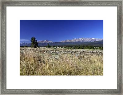 Going Blonde Framed Print by Jeremy Rhoades