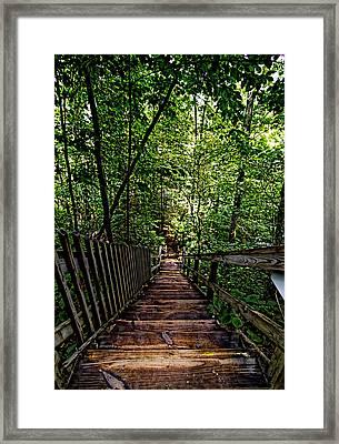 Going Down... Framed Print by John Dauer