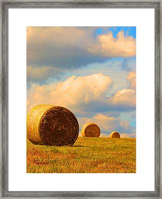 Going Going Gone Framed Print by Susan Duda