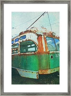 Going Green Framed Print by Sheryl Bergman
