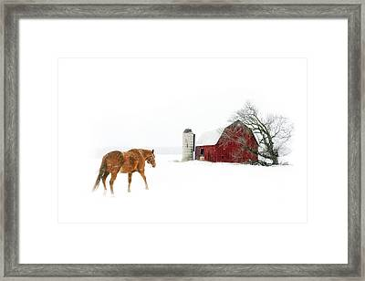 Going Home Framed Print by Ann Lauwers