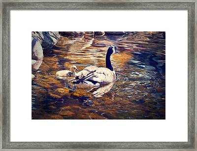 Going Home Framed Print
