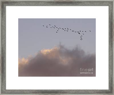 Going Places Framed Print