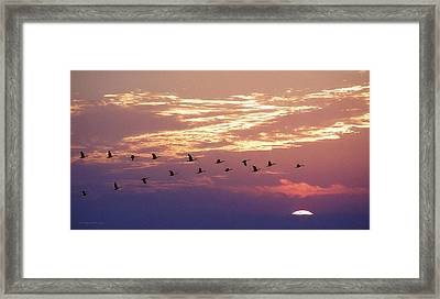 Going North Framed Print