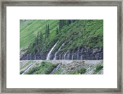 Going To The Sun Road Weeping Wall Framed Print