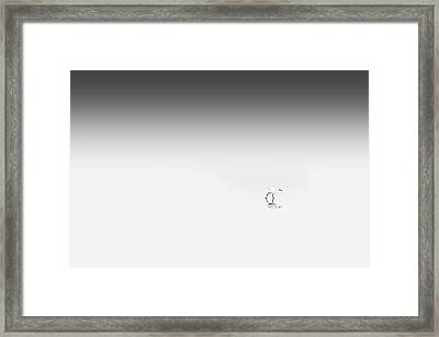 Going To The...rights... Framed Print