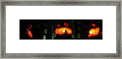 Going Up Pumpkin Framed Print by Shawn Dall