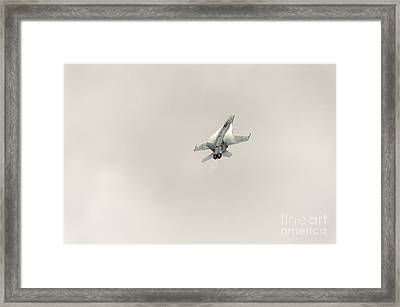 Going Vertical IIi Framed Print