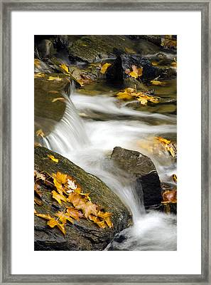 Going With The Flow Framed Print by Christina Rollo