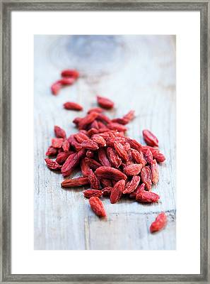 Goji Berries Framed Print by Gustoimages
