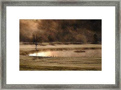 Gold And Copper Framed Print