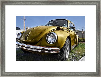 Gold Bug Framed Print by Bill Cannon