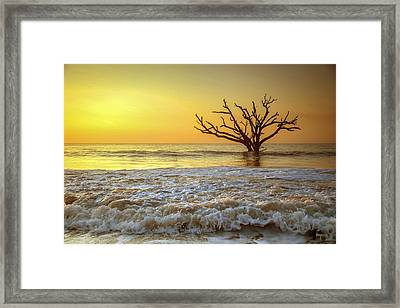 Gold Coast Framed Print